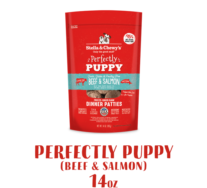 DP_Perfectly Puppy Beef & Salmon